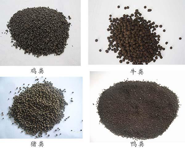 有机肥料加工